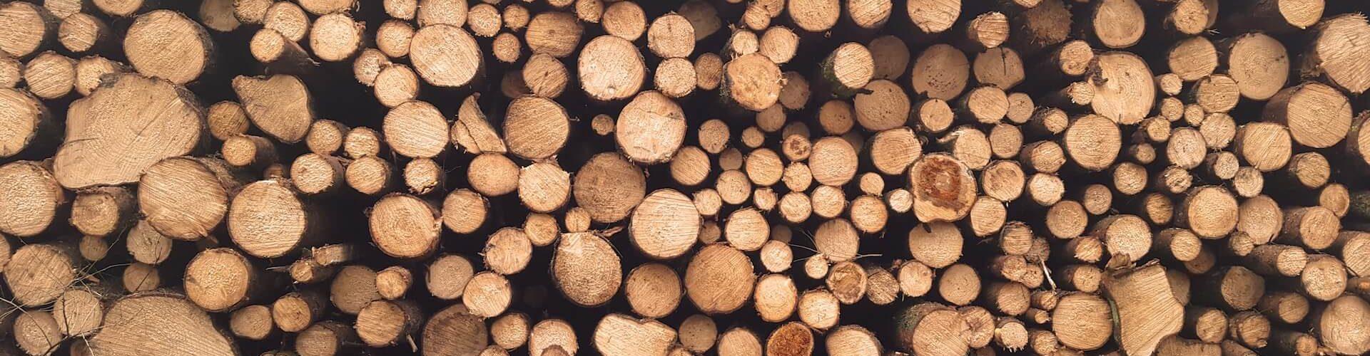 Ideales Holz zur Verbrennung in Feuerschale